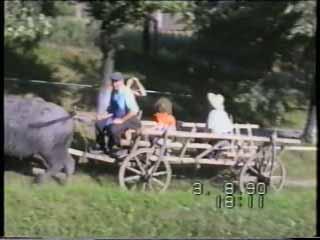 Bauernarbeiten